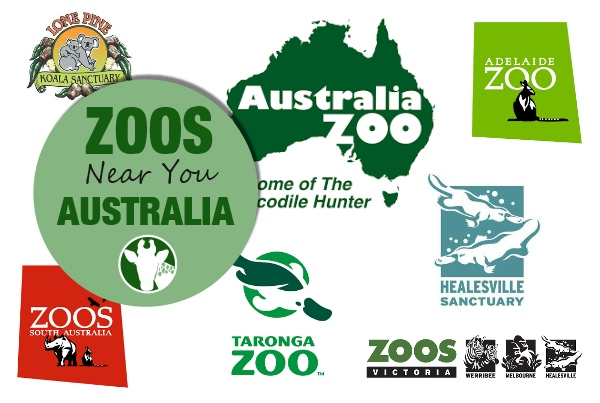 Zoos And Aquariums In Australia Become A Zookeeper